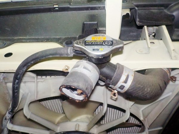 Ноускат Toyota Porte (W05201881) 9