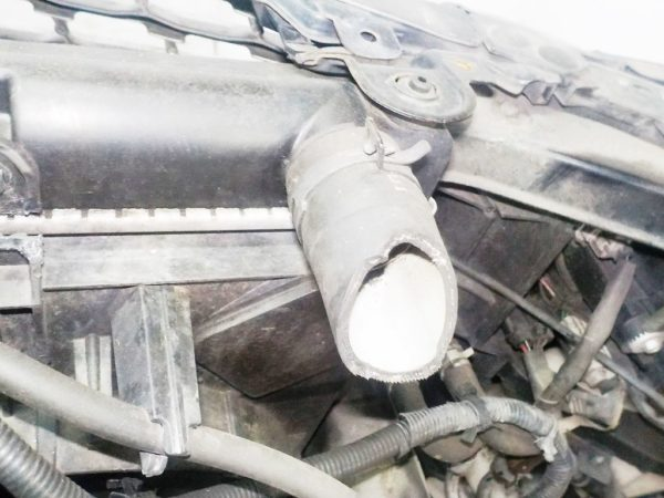 Ноускат Nissan Fuga (2 model) xenon (W121846) 9