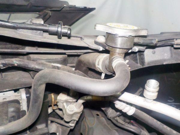 Ноускат Mazda Premacy CREW, (1 model) xenon (W09201814) 7
