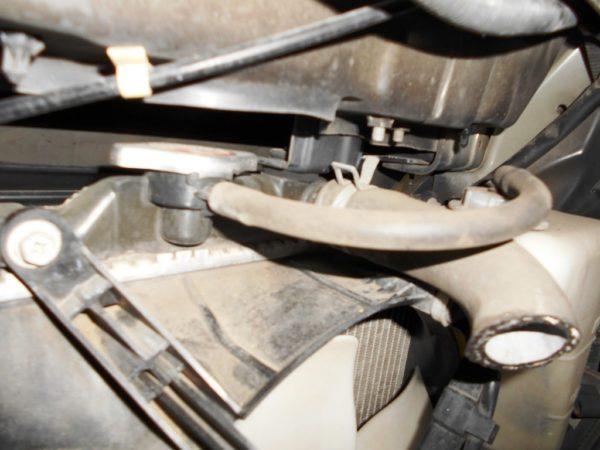 Ноускат Honda Capa (1 model) (E061920) 10